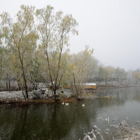 Beijing-CITIC-Jinling-Hotel-landscape-design-20