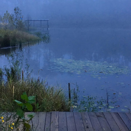 Duke-Pond-Image-(13)