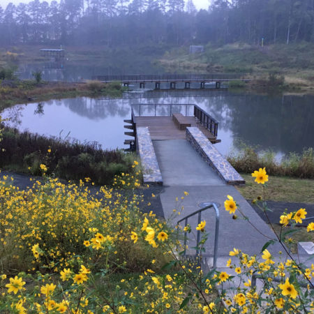Duke-Pond-Image-(2)