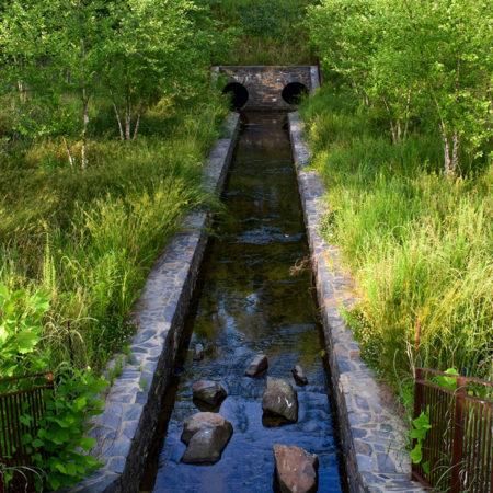 Duke-Pond-Image-(5)