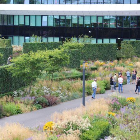 LB City Garden Groningen 03