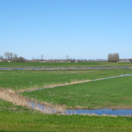 The former polderlandscape is still readable in the new delta landscape - photo H+N+S