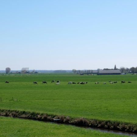 The inland polder landscape - photo H+N+S