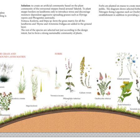 steppe planting diagram2
