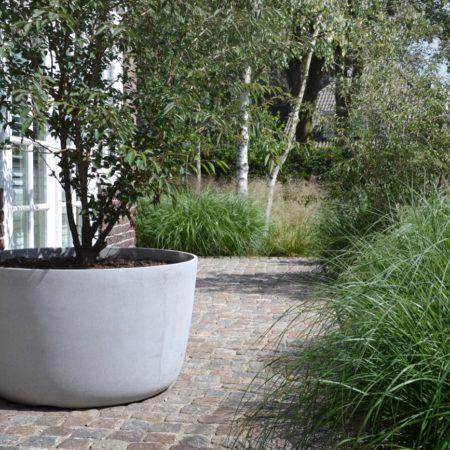 10--Andrew_van_Egmond_contemporary-nature-garden-Holland