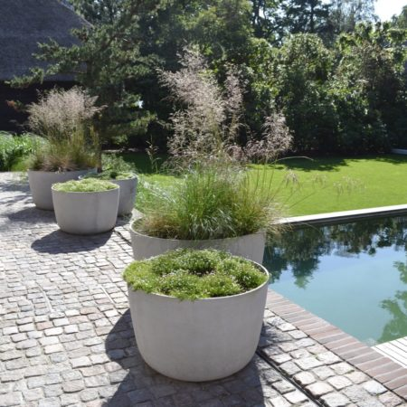 5--Andrew_van_Egmond_contemporary-nature-garden-Holland