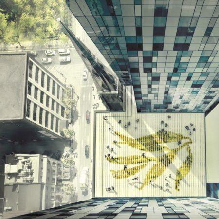 8-Top view rendering