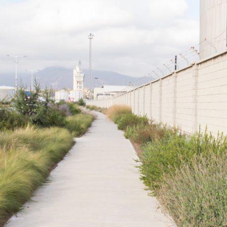 Algeciras#07