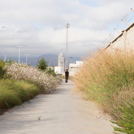 Algeciras#08