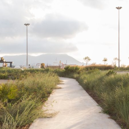 Algeciras#18