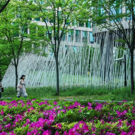 China Fortune Tian Di DLC (10)