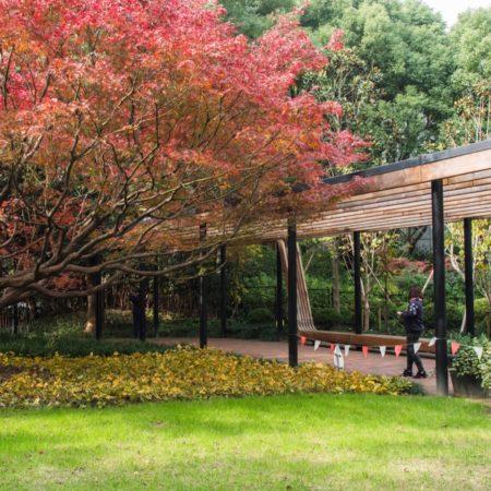 Donghu Park DLC (10)