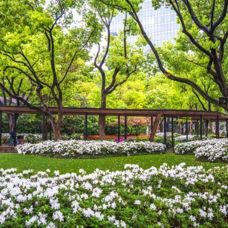 Donghu Park DLC (17)