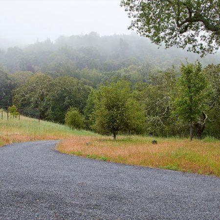HDG_Sonoma Mountain_MHarvey (12)