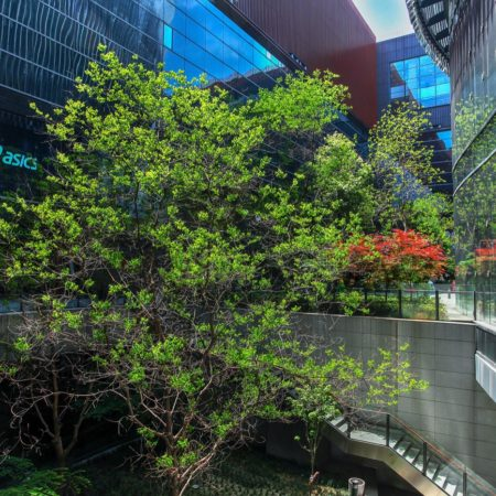 Hongqiao Tiandi Hub DLC (4)