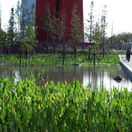 Yangpu Bridge Park DLC (12)