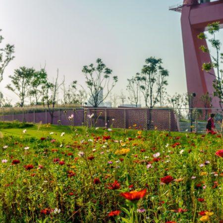 Yangpu Bridge Park DLC (18)