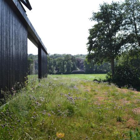 10-Andrew-van-Egmond_Schoorl-contemorary-garden-modern_B23