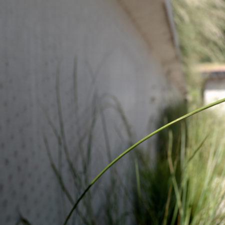 12-Andrew-van-Egmond+Studio-BLAD_Schoorl-contemorary-garden-modern_B15