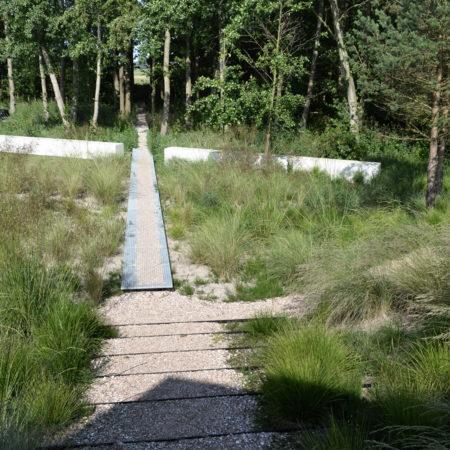 15-Andrew-van-Egmond_Schoorl-contemorary-garden-modern_B46