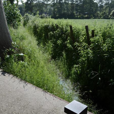 28-Andrew-van-Egmond_Schoorl-contemorary-garden-modern_B37