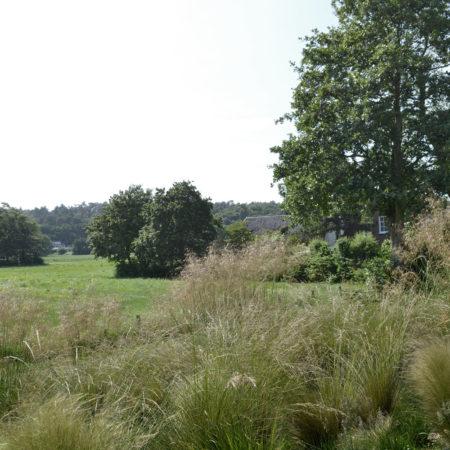 6-Andrew-van-Egmond_Schoorl-contemorary-garden-modern_B10