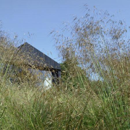 7-Andrew-van-Egmond_Schoorl-contemorary-garden-modern_B20JPG