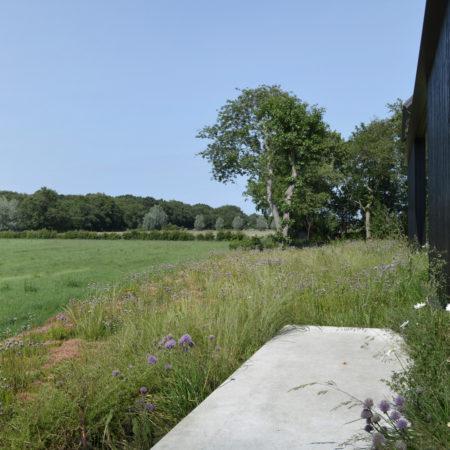 9-Andrew-van-Egmond_Schoorl-contemorary-garden-modern_B13