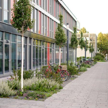 Campus_Bonn_Benner_010_PRINT