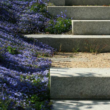 St Audoens Park - Dublin - Dermot Foley Landscape Architects (12)