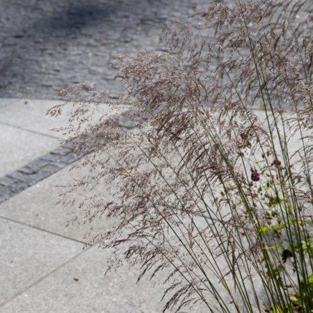 St Audoens Park - Dublin - Dermot Foley Landscape Architects (7)