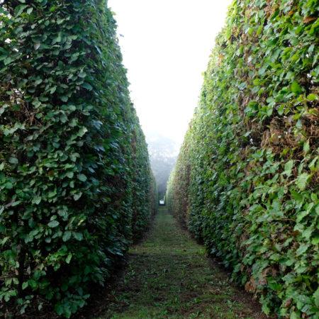 haver-og-landskab-september-2028-080
