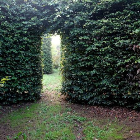 haver-og-landskab-september-2028-089