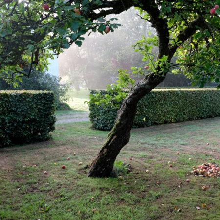 haver-og-landskab-september-2028-156