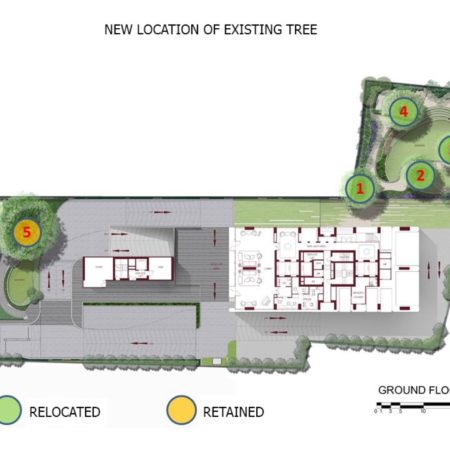 Landscape plan with existing and relocated rain trees