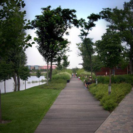 03_wood path