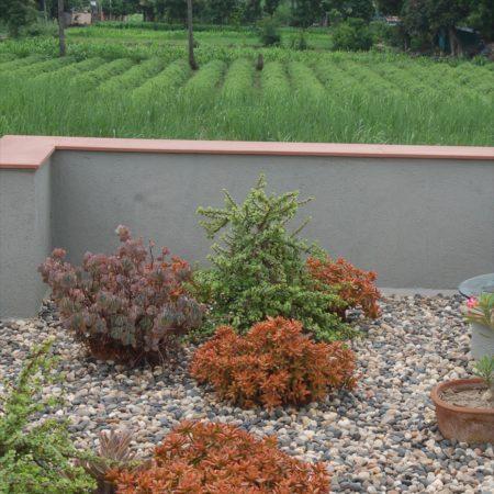 20_terrace garden