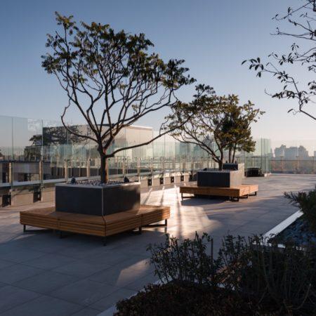 24 rooftop