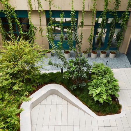 3 - Courtyard Planting - 2500 px