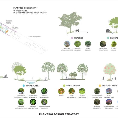 Planting Design Strategy in imitating a true forest