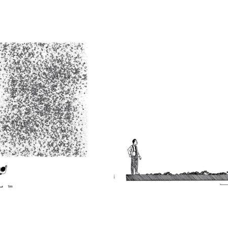 Observation (10)