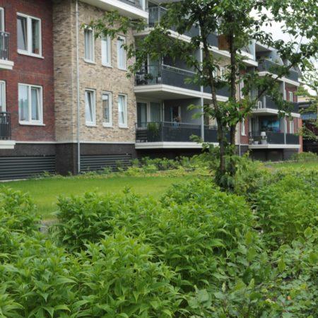 Op Houten Garden 10
