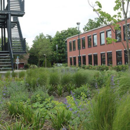 Op Houten Garden 13