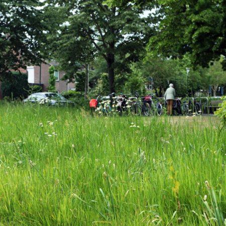 Op Houten Garden 5