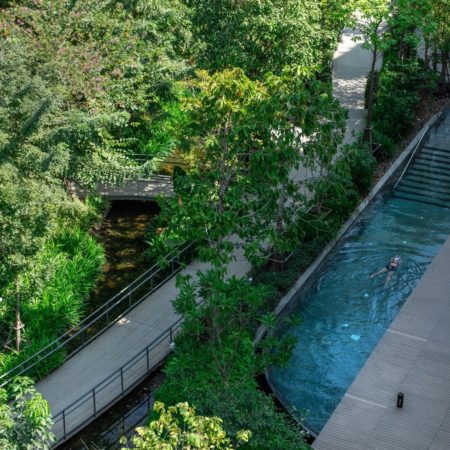 Exercising in the pool amidst greenery