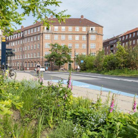 Sankt Kjelds Square and Bryggervangen_Mikkel Eye_17