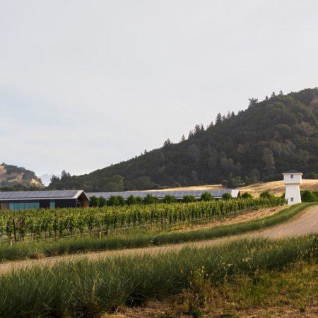 Silver Oak Winery_01