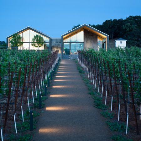 Silver Oak Winery_14