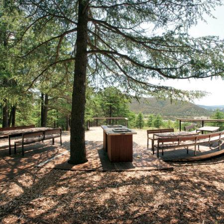 05_National-Arboretum
