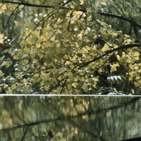 10 trees reflected in the infinity pool ©Xiaowen Jin